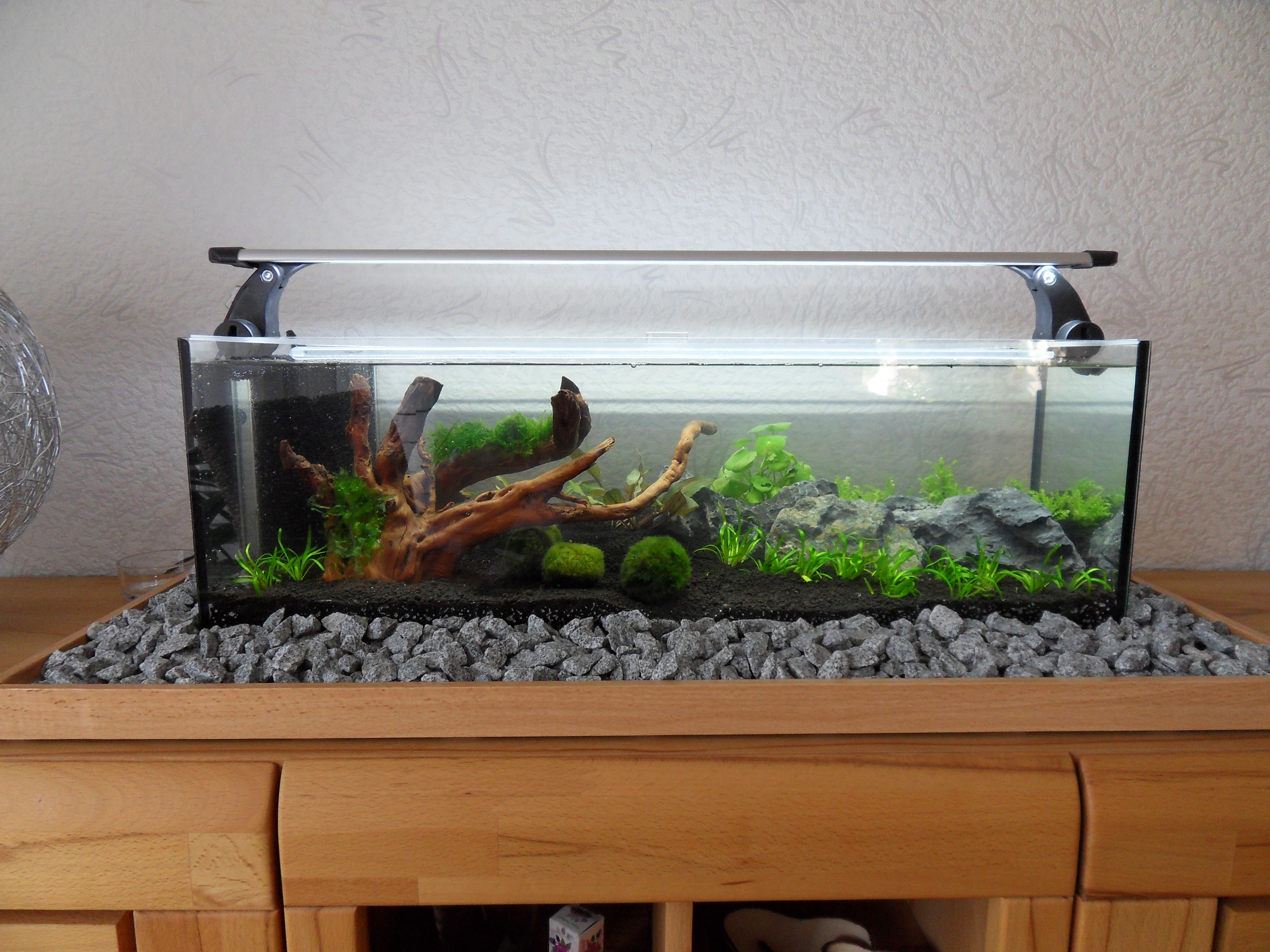 aquarium 80x20x20 cm 32 liter pepe aquaristik. Black Bedroom Furniture Sets. Home Design Ideas